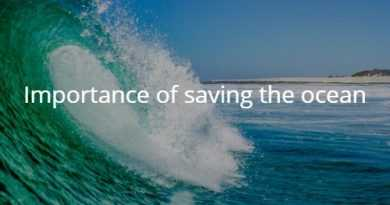 Importance of saving the ocean