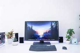 Best Monitor for Reading